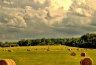Na adrese poljoprivrednika poslano 120 novih ugovora vrijednih gotovo 13,5 milijuna kuna