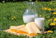 Otkupljeno i donirano 20 tona mliječnih proizvoda