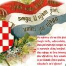 Političari se odrekli hrvatskoga jezika?