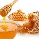 Školski medni dan s hrvatskih pčelinjaka postaje tradicija