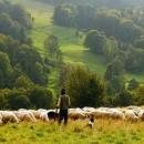 Natječaj za neproduktivna ulaganja s očuvanjem okoliša