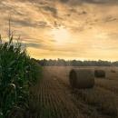 Vlada RH poslala na prvo čitanje u Hrvatski sabor 5 zakona i donijela 3 odluke iz resora poljoprivrede