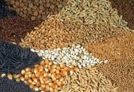 Očuvanje genetskih izvora za hranu i poljoprivredu