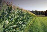 eSavjetnik – nova aplikacija sa svim informacijama važnima za hrvatske poljoprivrednike