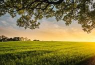 O izmjenama Zakona o poljoprivrednom zemljištu